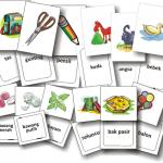 Pengalaman Belajar dengan Flashcard