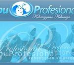Wisata Belajar bersama Institut Ibu Profesional