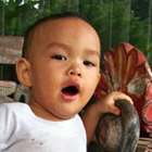 Checklist Perkembangan Bayi dan Anak