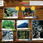 Belajar Fotografi dari Orangtua Homeschooling