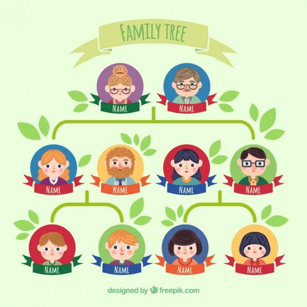 Membangun Pohon Keluarga Family Tree Dengan My Heritage Rumah