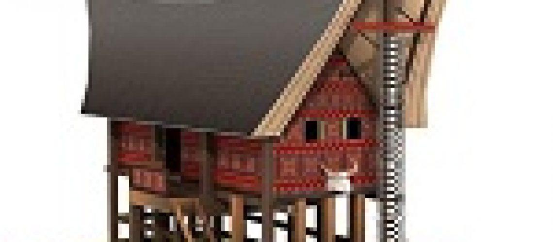 Rumah Toraja: Tongkonan