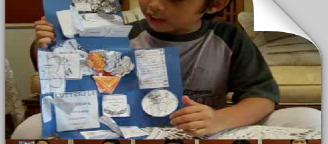 Yudhis dan Lapbook Kupu-kupu