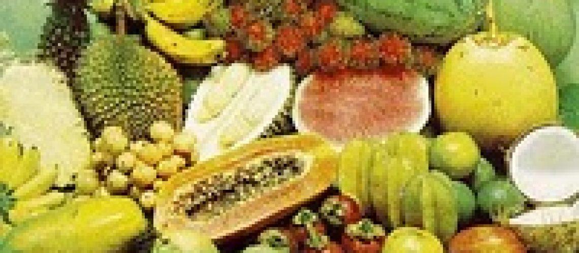 buah-tropis sumber bagudung saba