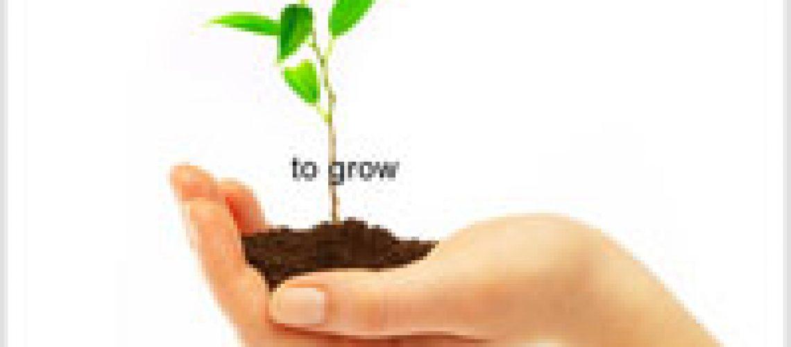 To Grow - by presentationzen