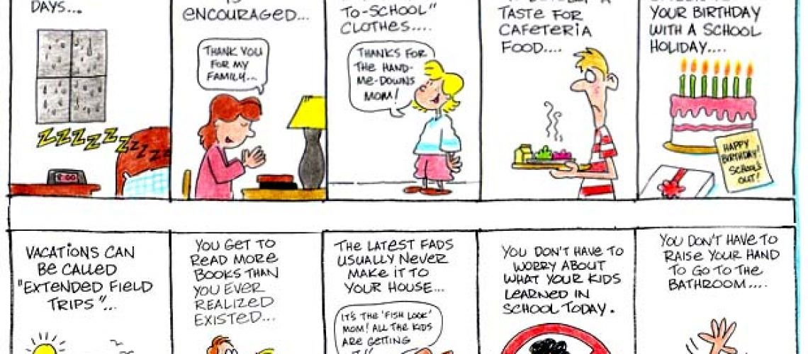 homeschool reason cartoon by Jim Erskine