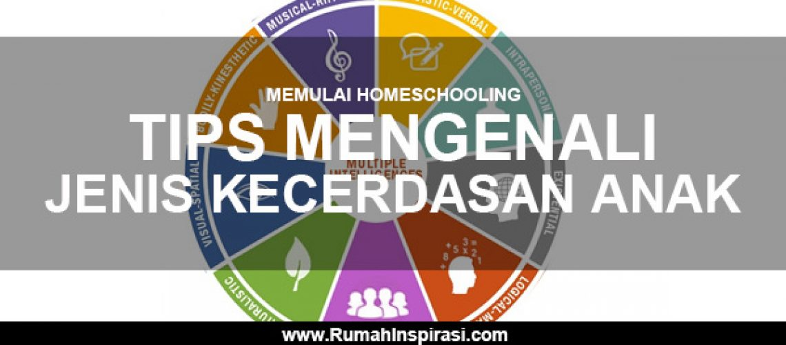 memulai-homeschooling-tips-mengenali-jenis-kecerdasan-anak