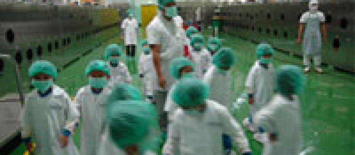Kunjungan ke pabrik Sari Roti